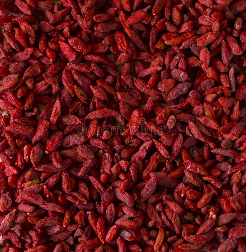 Rode bessen Goji stock afbeelding
