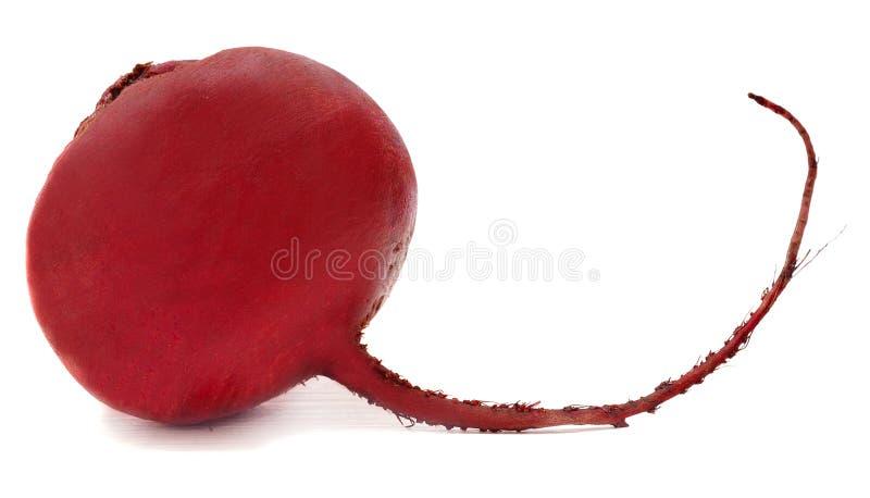 Rode biet royalty-vrije stock afbeeldingen