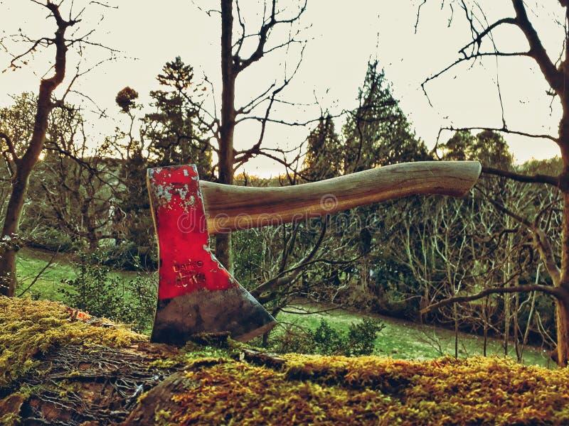 Rode Bijl in Logboek stock afbeeldingen