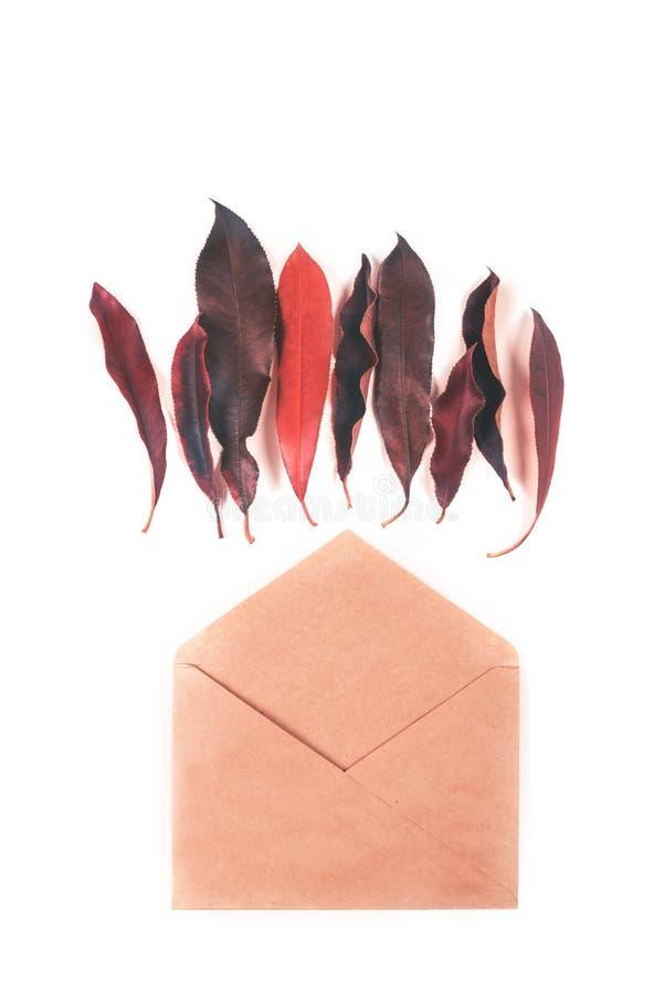 Rode bladeren en envelop op witte achtergrond stock foto's
