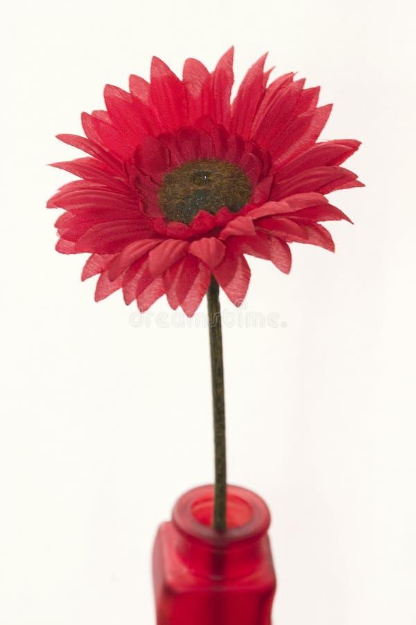 Rode bloem in een rode vaas royalty-vrije stock foto