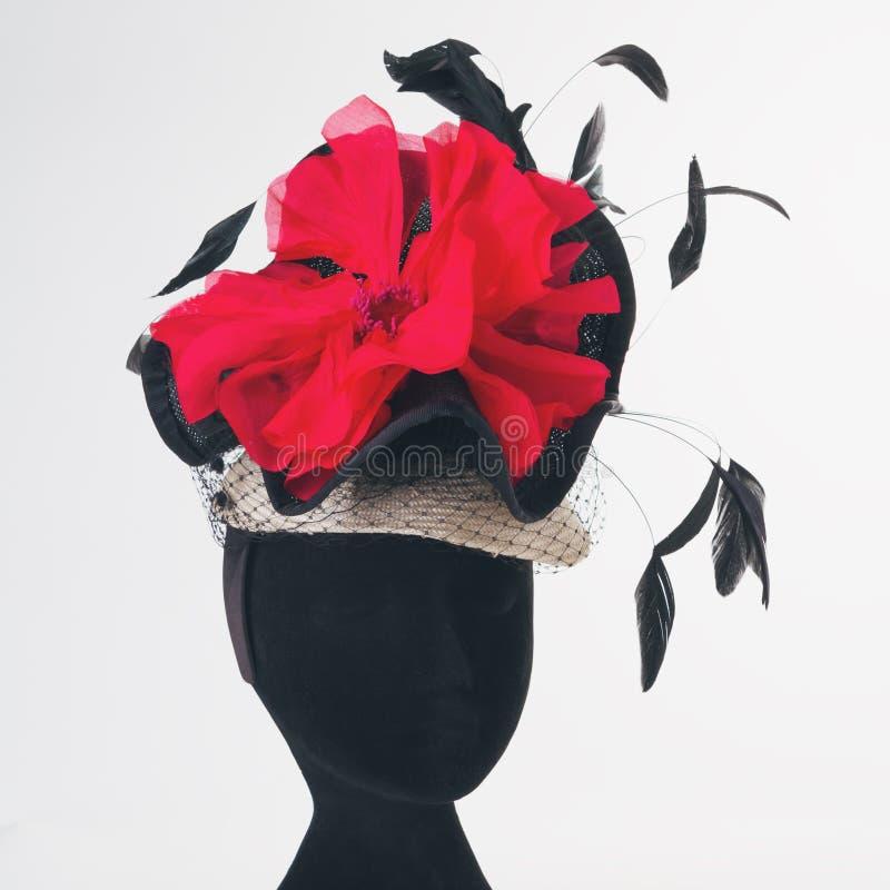 Rode bloem en de zwarte hoed van verenrassen stock afbeelding