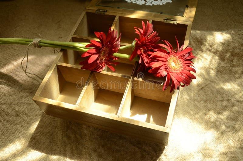Rode Bloemen  Rode Gerbera  Gerbera, Kruidenierswinkelstijl, Nostalgie royalty-vrije stock afbeelding