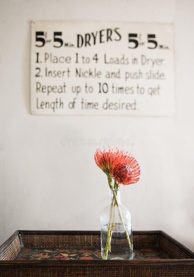 Rode bloemen met uitstekend wasserijteken stock foto