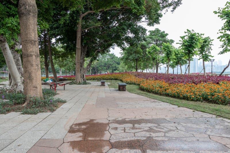 Rode bloemen op het groene gazon Steengangen in het stadspark Groen gazon, banken voor rust royalty-vrije stock fotografie