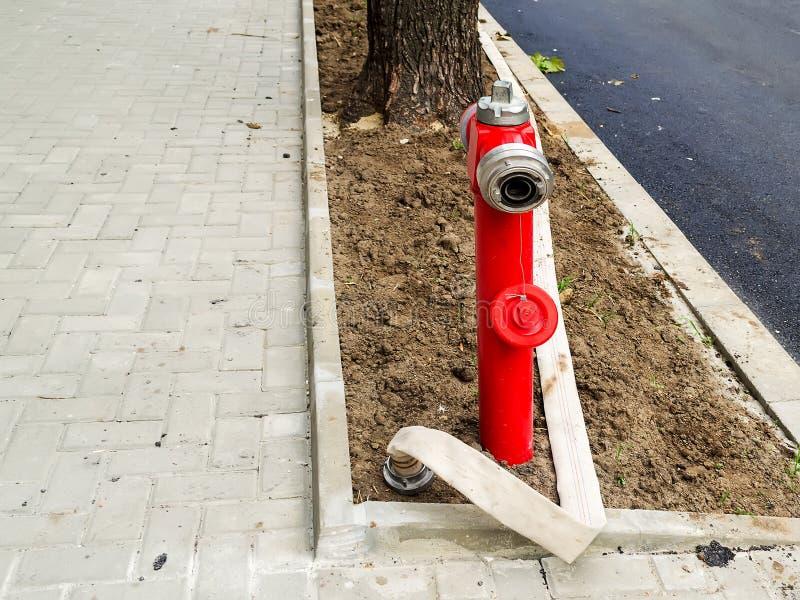 Rode brandkraan met een geopende verbinding en een lange witte brandslang zonder water op een nieuw gazon bij een onlangs geasfal stock foto's