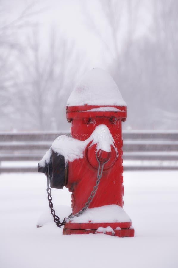 Rode brandkraan in sneeuw royalty-vrije stock foto's