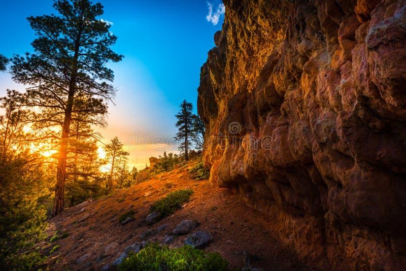 Rode Canion dichtbij Bryce bij Zonsondergang stock afbeeldingen
