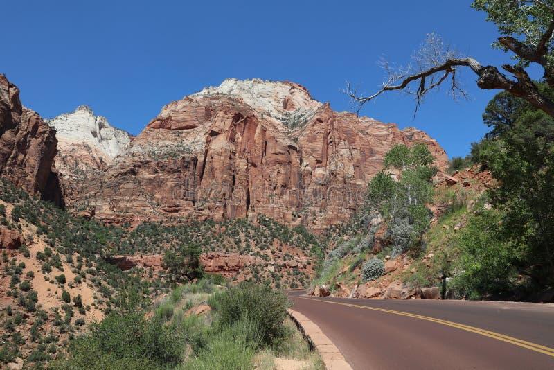 Rode Canion in Dixie National Forest Utah De V.S. stock afbeeldingen