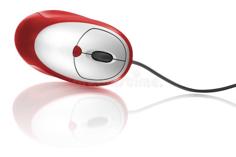 Rode computermuis stock afbeeldingen
