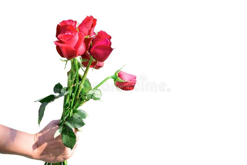 Rode de rozenbloem bouquetà ¹ ƒ van Nice stock foto