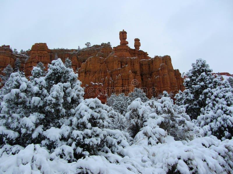 Rode die Canion in sneeuw, Utah wordt behandeld royalty-vrije stock afbeeldingen