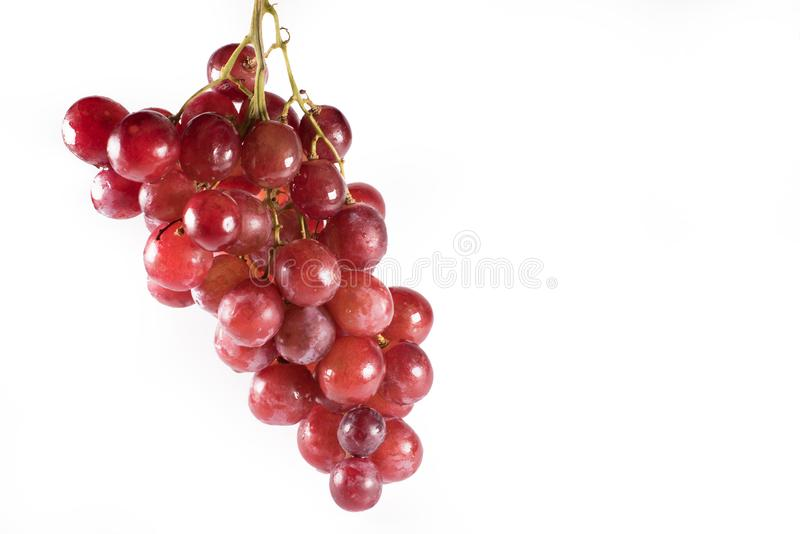 Rode die druiven met stelen op witte achtergrond worden geïsoleerd stock foto