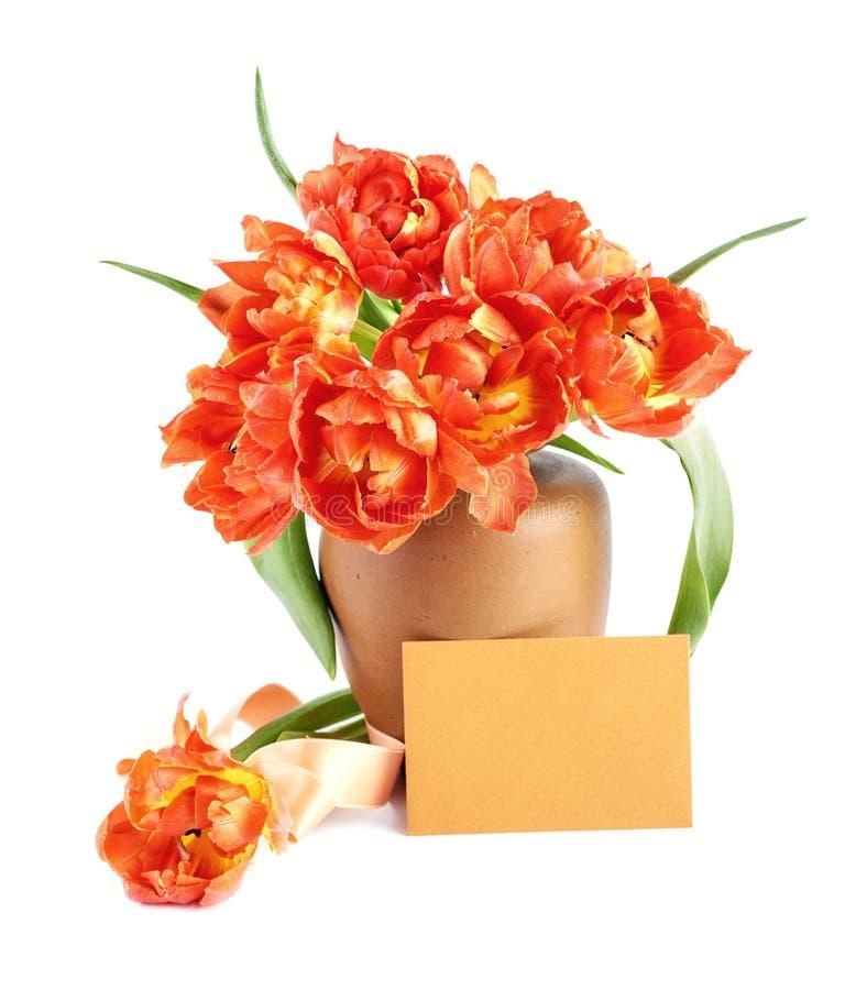 Rode die tulpen in kleivaas op wit met lege kaart wordt geïsoleerd stock foto