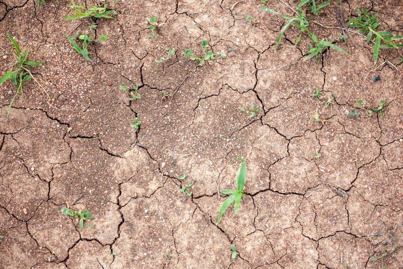Rode droge aarde tijdens de droogten van Australië royalty-vrije stock foto