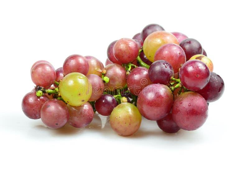 Rode druiven die op witte achtergrond worden geïsoleerda royalty-vrije stock afbeelding