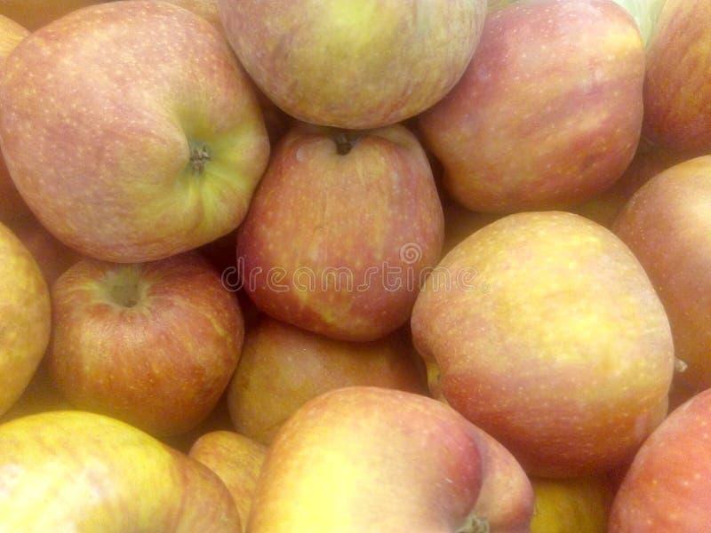 Rode echte appelen stock foto's