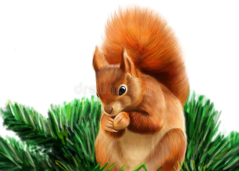 Rode Eekhoorn stock illustratie