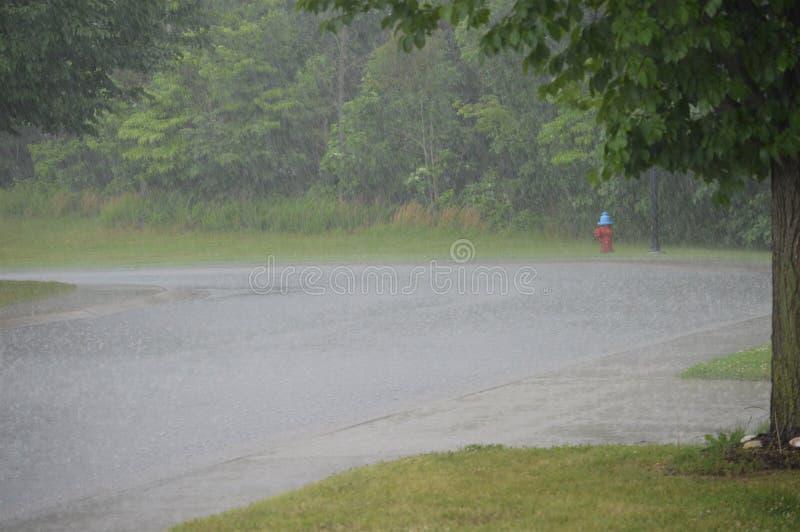 Rode en Blauwe Brandkraan aan het eind van een Weg in Regen stock foto's