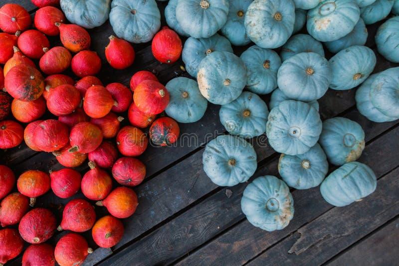 Rode en blauwe Pompoenen royalty-vrije stock afbeeldingen