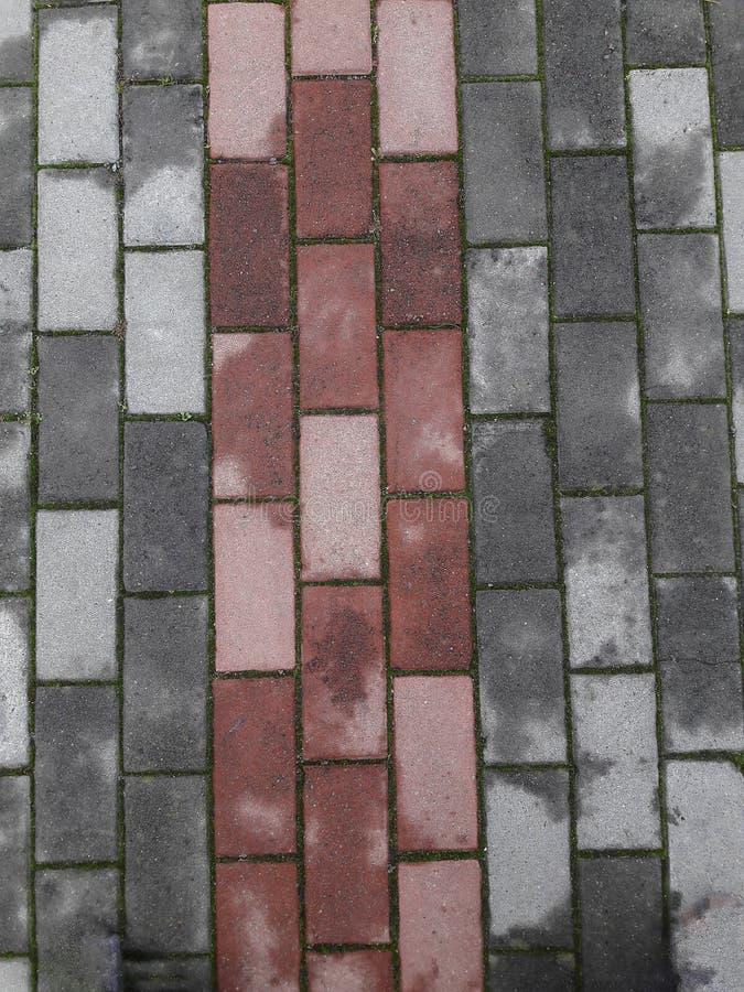 Rode en grijze bestratingstegels, na de regen Textuur en achtergrond van steen stock foto's