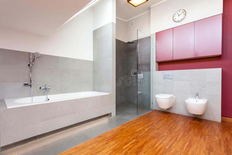 Rode en grijze moderne badkamers royalty-vrije stock foto