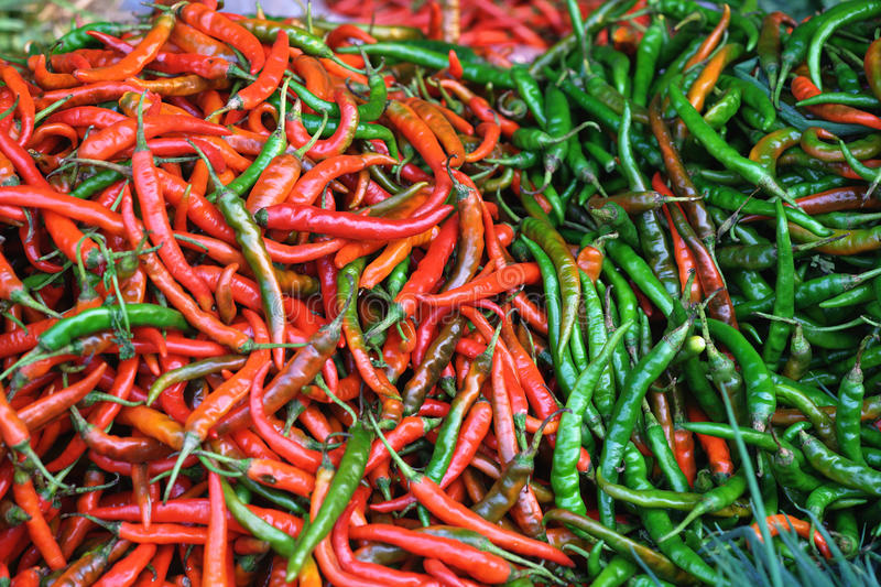 Rode en groene Spaanse peperpeper royalty-vrije stock foto