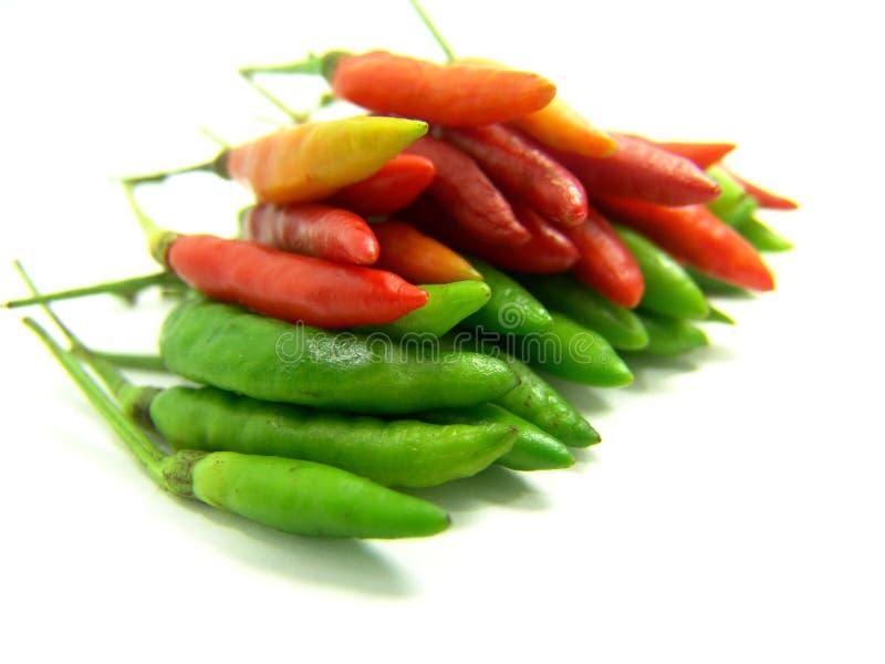 Rode en Groene Thaise Spaanse peper stock foto