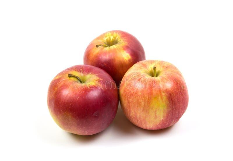 Rode en roze die appelen op witte achtergrond worden geïsoleerd royalty-vrije stock foto's