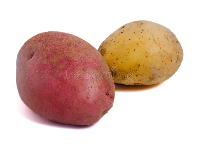 Rode en witte aardappel royalty-vrije stock foto