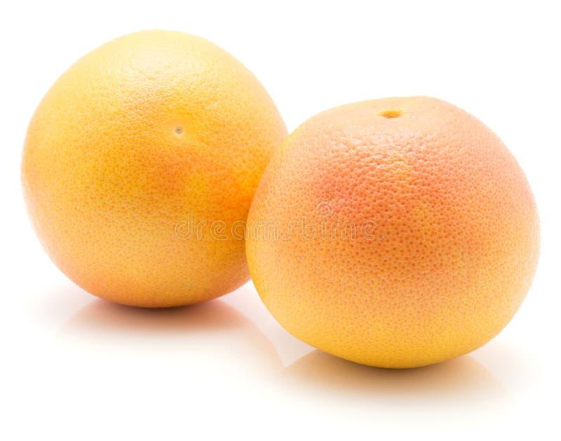 Rode geïsoleerde grapefruit royalty-vrije stock foto