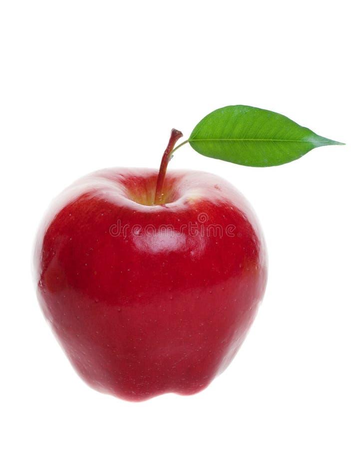 Rode geïsoleerdee appel royalty-vrije stock foto