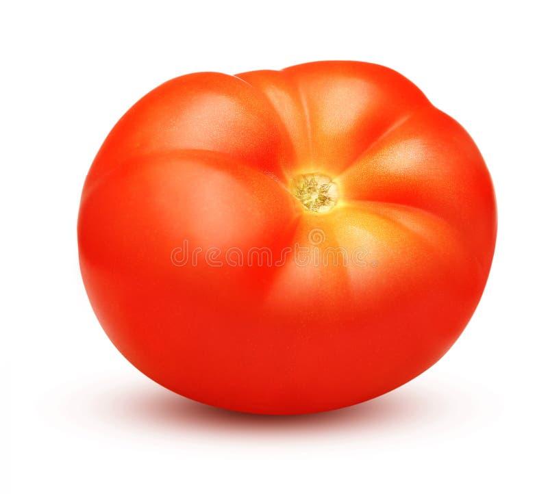 Rode geïsoleerdei tomaat stock afbeeldingen