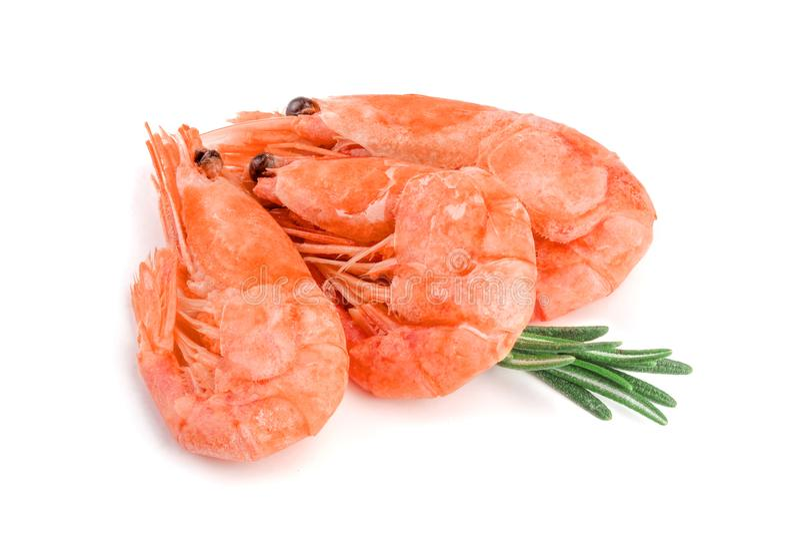 Rode gekookte die garnaal of garnalen met rozemarijn op witte achtergrond wordt geïsoleerd royalty-vrije stock afbeeldingen