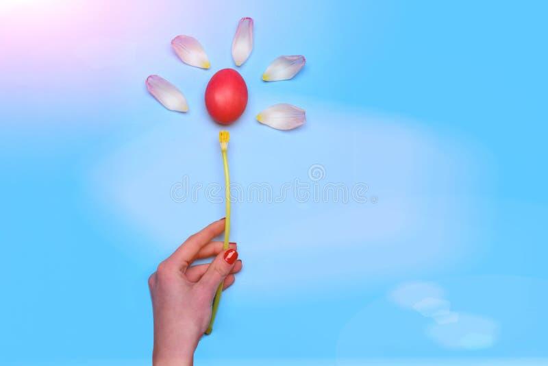 Rode geschilderde paasei en de lentetulpenbloem op blauw stock afbeelding
