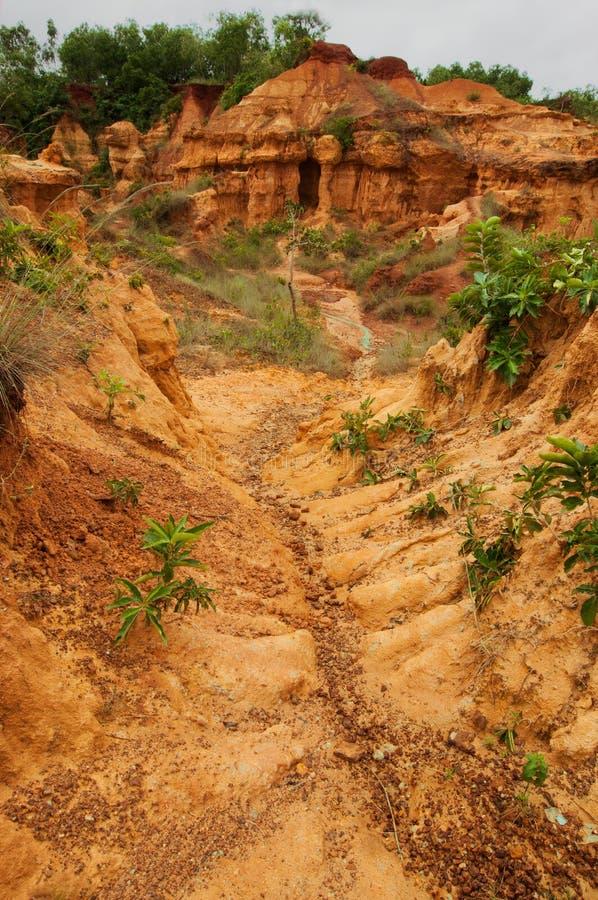 Rode grond van gongoni, het Westen Benga, India stock fotografie