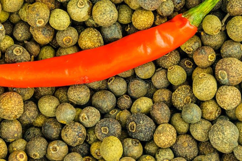 Rode grote de peul kruidige groente van de Spaanse peperpeper op een achtergrond van de grote zwarte achtergrond van de peperboll royalty-vrije stock afbeelding