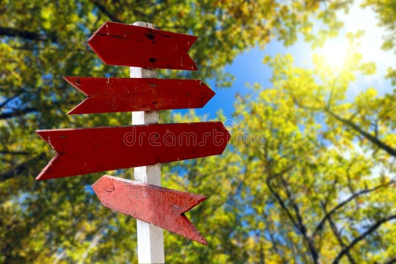 Rode houten richtingpijltekens in groen bos stock afbeeldingen
