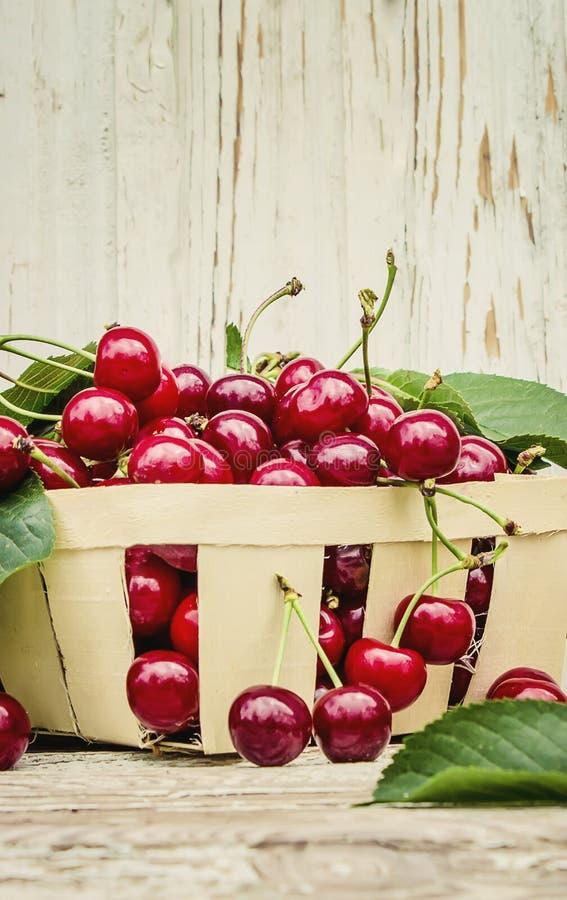 Rode kersen Selectieve nadruk het fruit van de voedselaard stock afbeeldingen