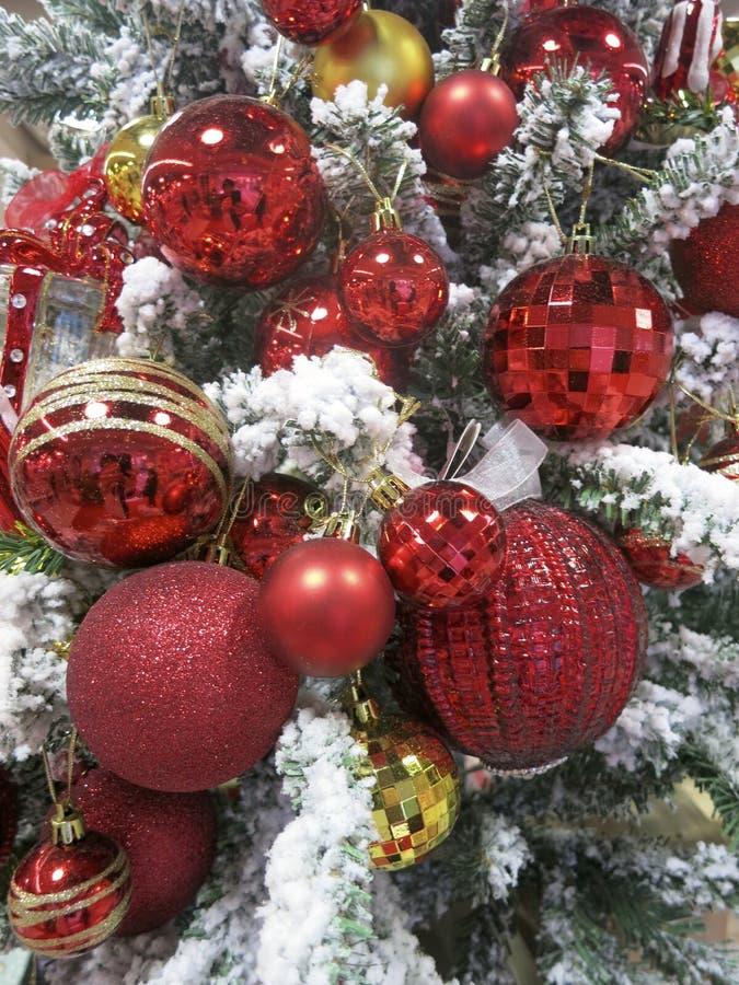 Rode Kerstmisornamenten -- De glanzende, Rode Ornamenten van Sprakling op Sneeuwkerstmisboom stock foto's