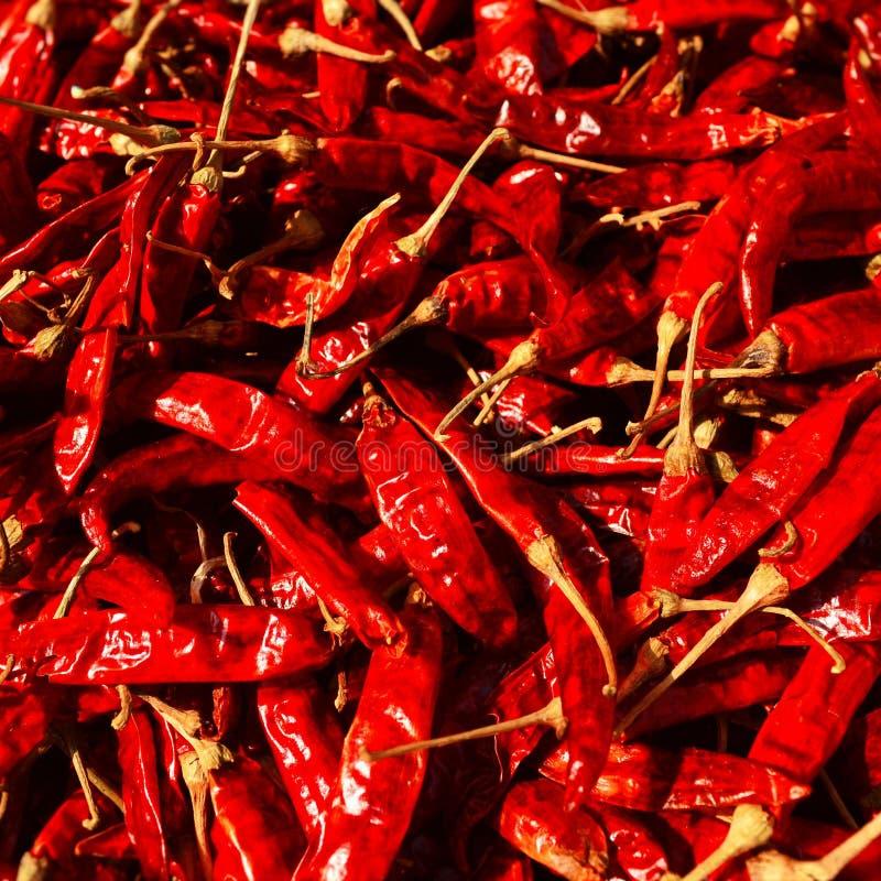 Rode Koel stock fotografie