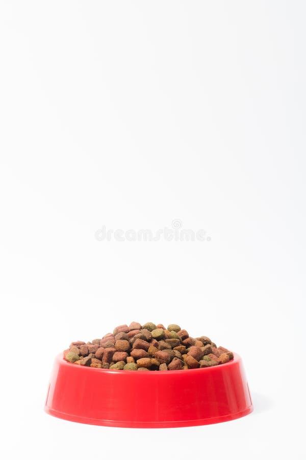 Rode kom met droog dierlijk voedsel voor katten of honden op witte achtergrond met ruimte voor tekst royalty-vrije stock foto