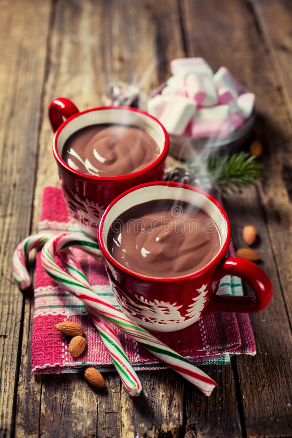 Rode kop van cacao royalty-vrije stock fotografie