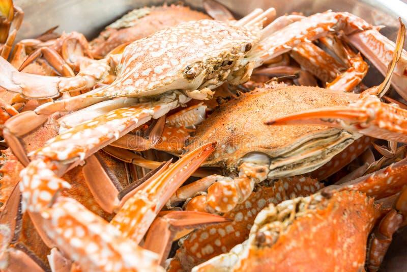 Rode Krab royalty-vrije stock foto's