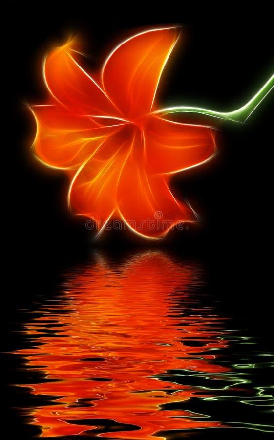 Rode lilie royalty-vrije stock afbeelding