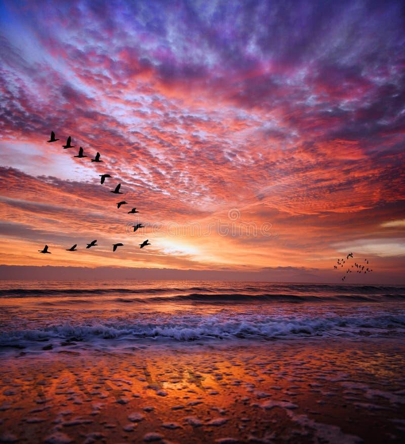 Rode magische zonsondergang bulgarije stock foto's