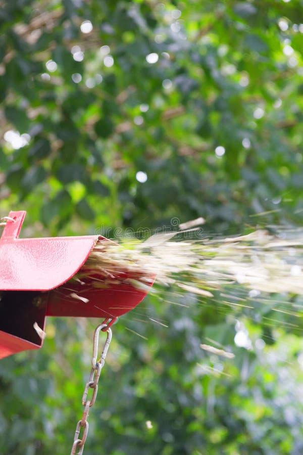 Rode ontvezelmachine voor bomen stock afbeeldingen