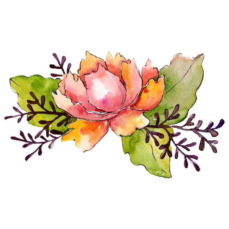 Rode oranje bloem met kalkbladeren Het geïsoleerde element van de boeketillustratie Waterverf achtergrondillustratiereeks vector illustratie
