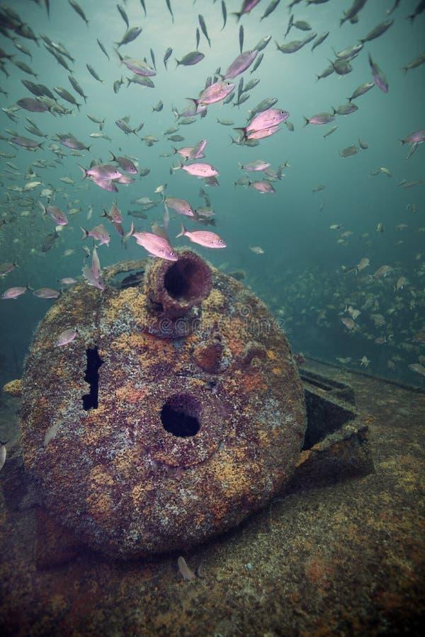 Rode Overzeese Sleepboot - Tomtate-Vissen stock foto's