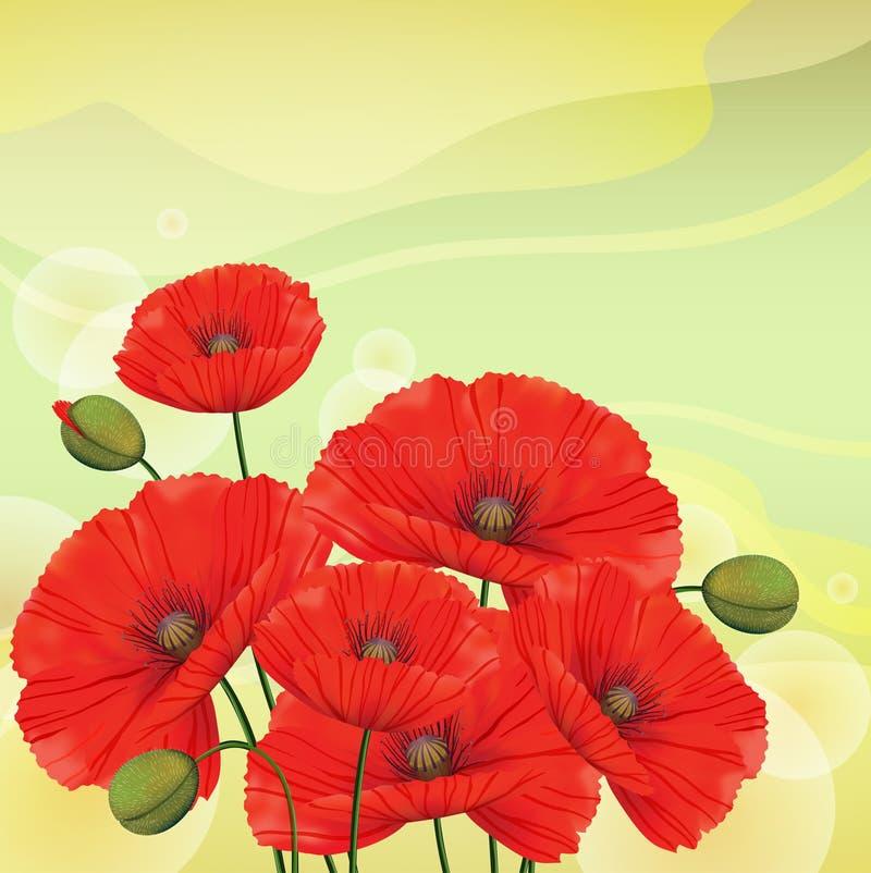 rode papavers op groene achtergrond stock illustratie